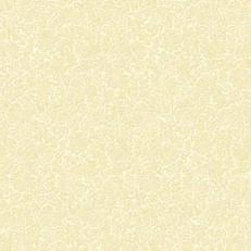 Spanlin-Serviette DENICE CHAMPAGNER-BEIGE 40 x 40 cm