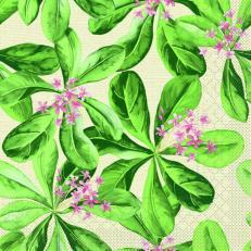 Tissue-Serviette JANE 33 x 33 cm