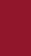 Zelltuch-Serviette 40 x 40 cm; 2-lagig; 1/8 Falz; 1400 Stk. im Karton; Farbe: BORDEAUX