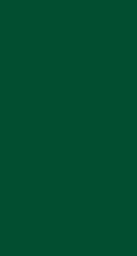 Zelltuch-Serviette 40 x 40 cm; 2-lagig; 1/8 Falz; 1400 Stk. im Karton; Farbe: GRÜN